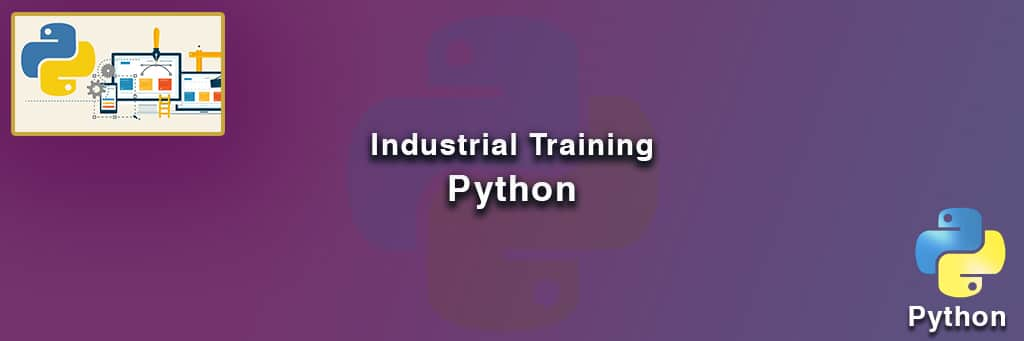 Python Industrial Training